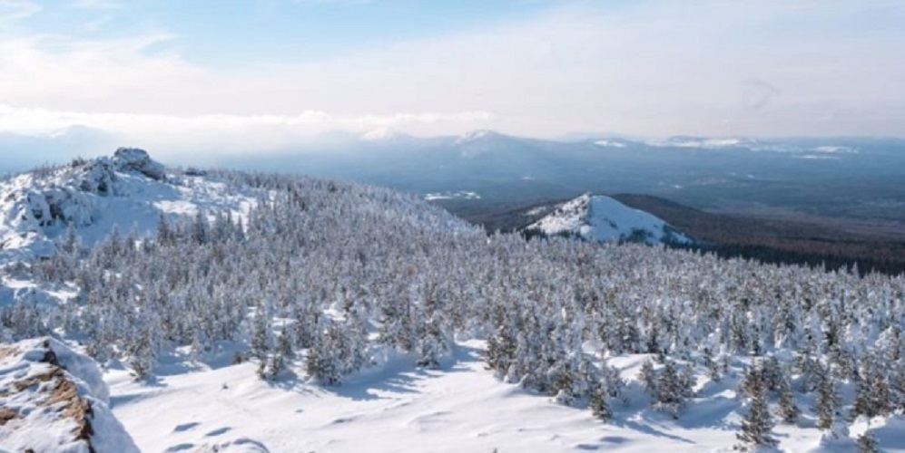 taiga biome forest example ural mountains russia