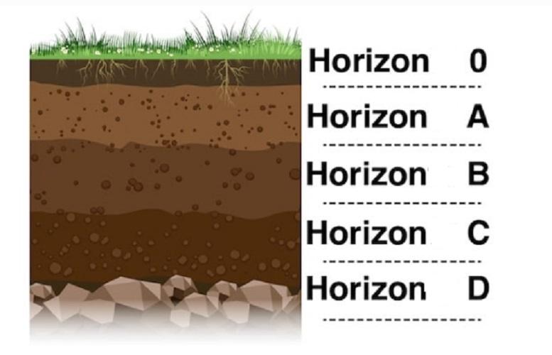 strata soil layers