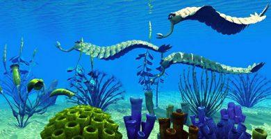 Paleozoic Era