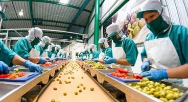 modes of production maximum economy