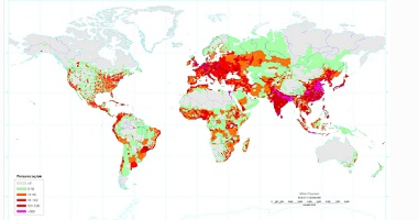 what is absolute population