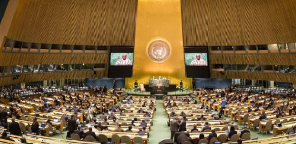 public international law subjects un