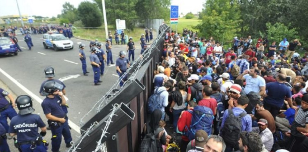 social law migration