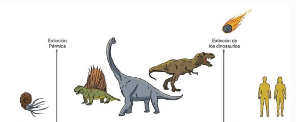you were paleozoic mesozoic cenozoic eon phanerozoic