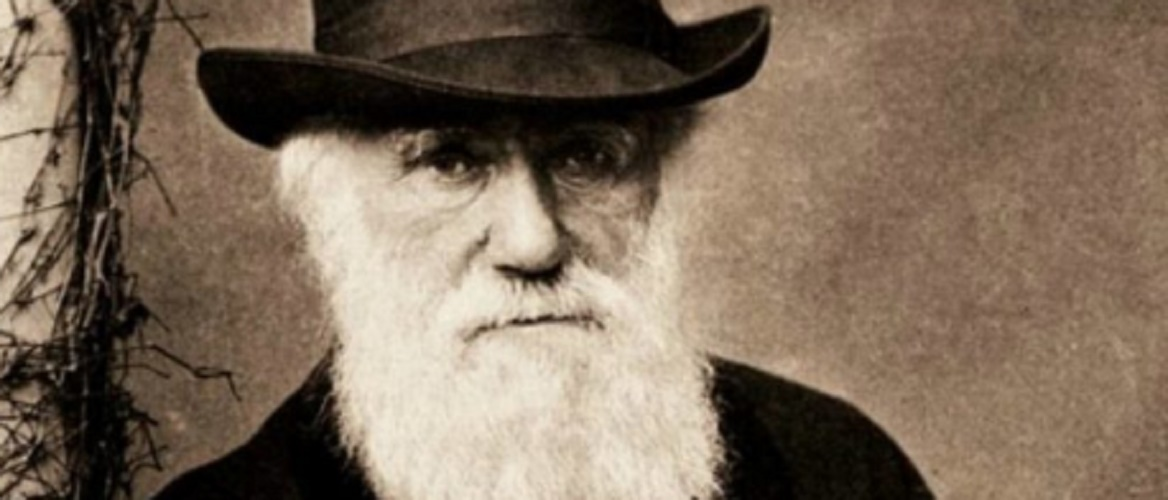 Species - Charles Darwin