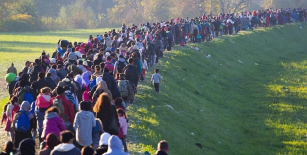 human geography migration