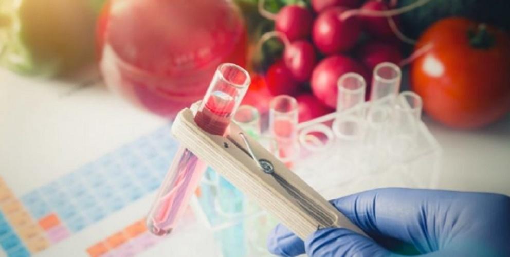 nanotechnology applications agricultural design