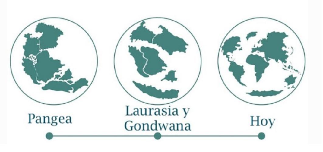 pangea continental drift theory laurasia gondwana