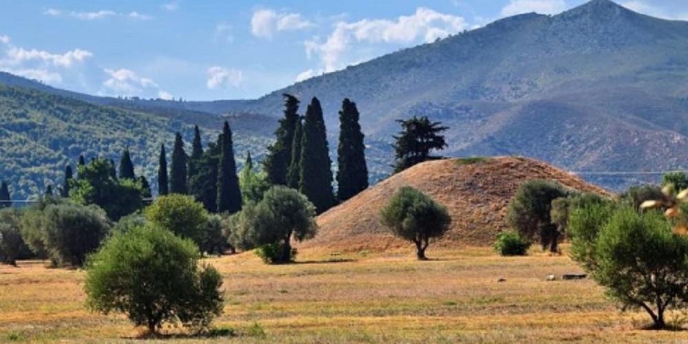 medical wars battle of marathon greece persians