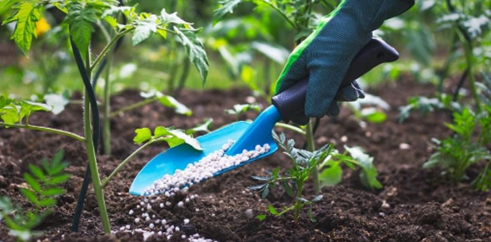 pesticide pesticide fertilizer