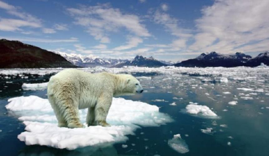global warming - poles