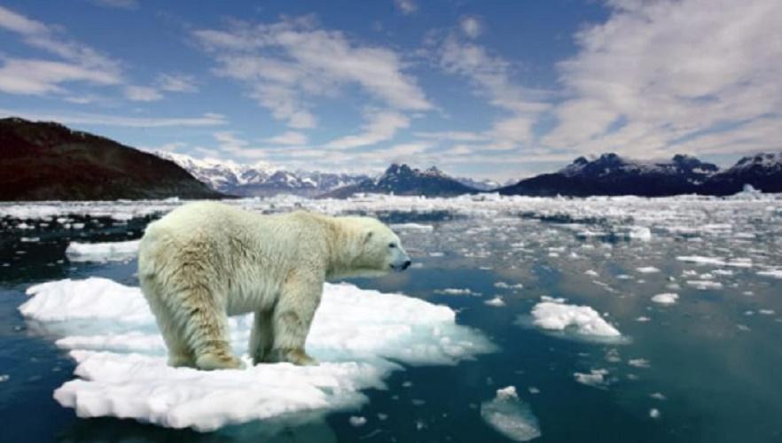 climate change - poles