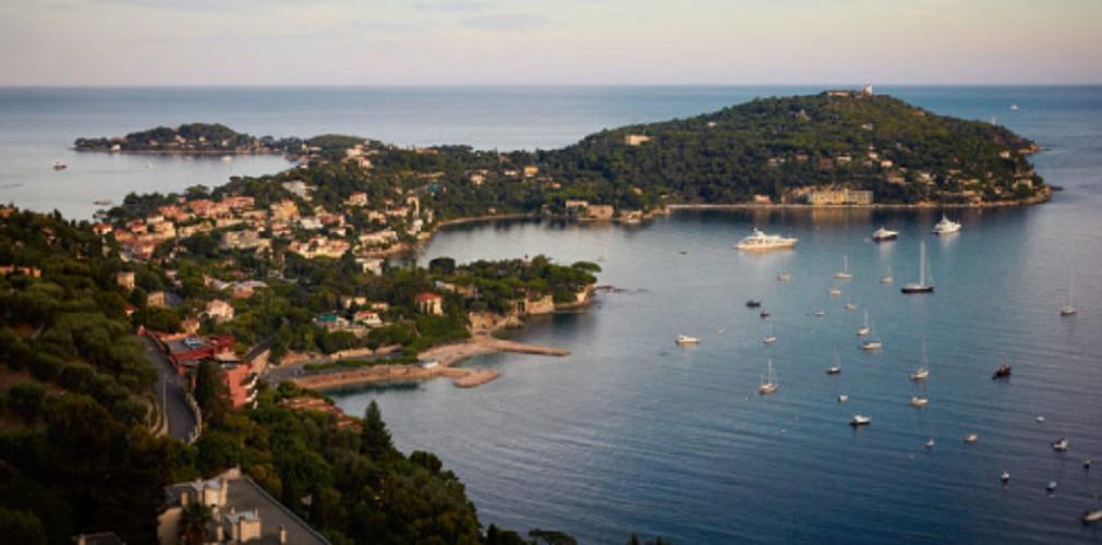 Population growth - Monaco