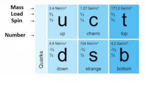 quarks types