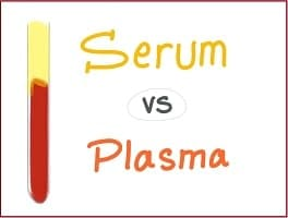 what is the difference between serum and plasma