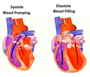 what is the difference between systole and diastole
