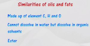 similarities between fat and oil