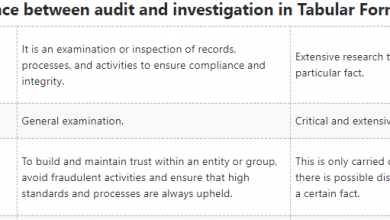 Difference between audit and investigation