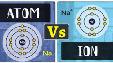 Differences Between Atom And Ion